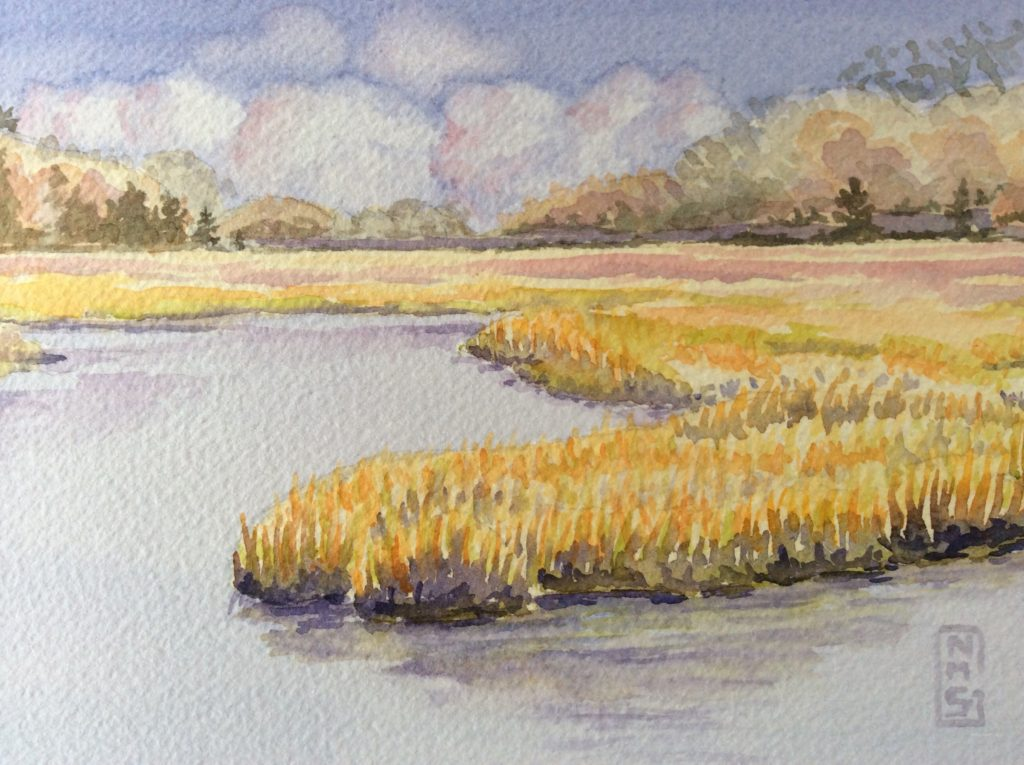 Essex saltmarsh, Cape Ann