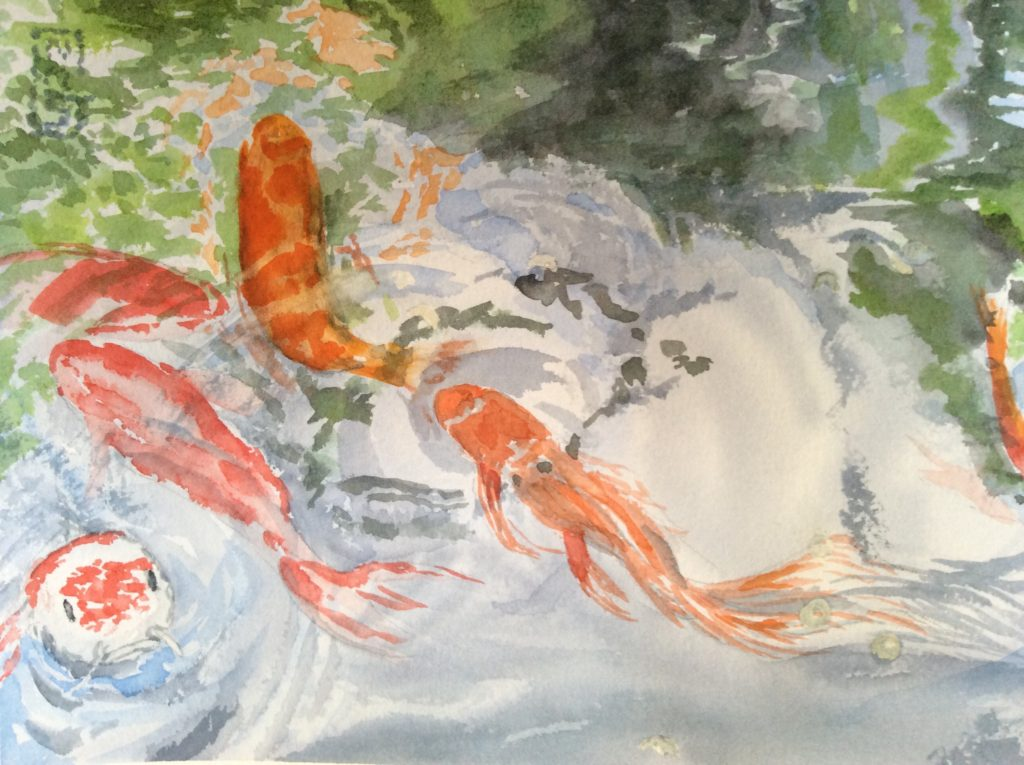 Koi 2 - Watercolor painting by NMSG, orange and white koi in a pond